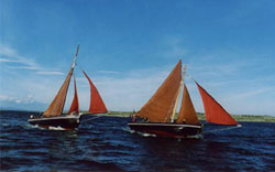 Racing the Galway Hookers on Galway Bay